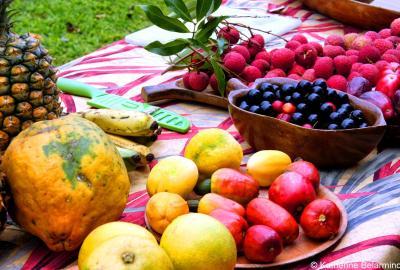Magia światła, która powstała z pasji do tropikalnego owocu