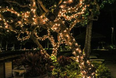 Przemyślany romantyzm, czyli projekt oświetlenia ogrodu
