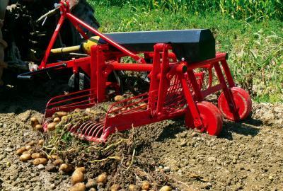 Kopaczka do ziemniaków – niby prosta, ale wybór nie będzie łatwy
